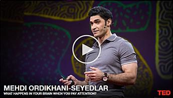 Mehdi Ordikhani-Seyedlar TED talk